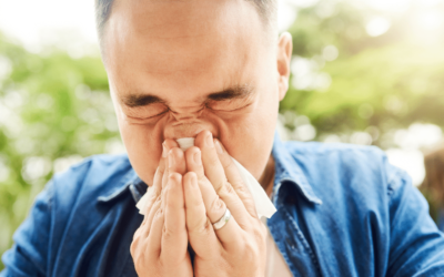 Sneezing? Sore, red, itchy eyes? Spring/Summer? Then it is probably the dreaded Hayfever!