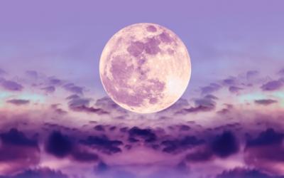 Alaskan Essence for the full moon