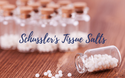"Introduction to the 12 ""Schussler"" Tissue Salts"