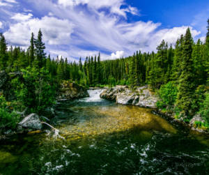 Alaska environment