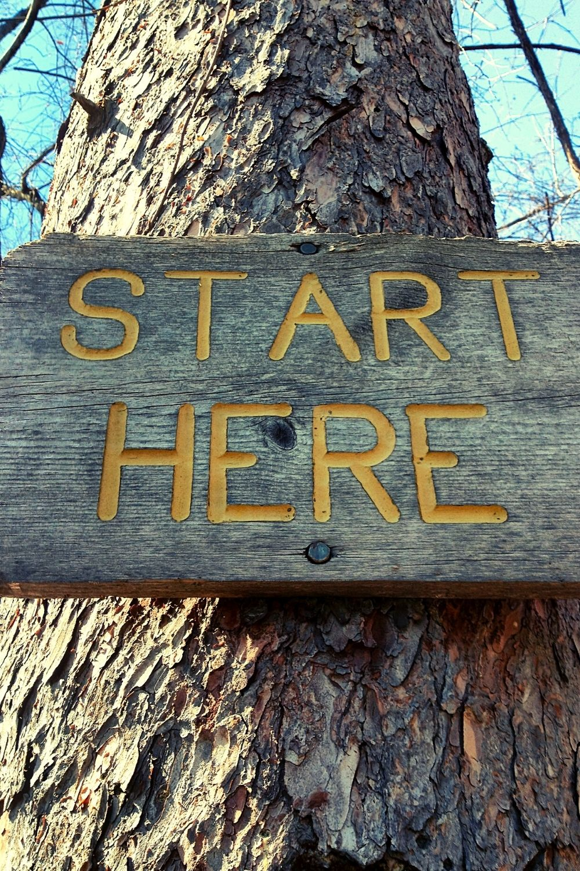 getting-started-refreshing-horizons-bio-resonance-consultation